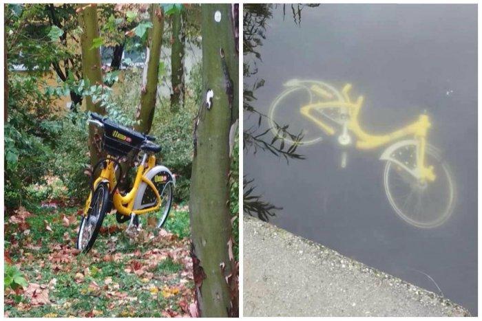 Ilustračný obrázok k článku FOTO  Kam zmizli žlté bicykle Slovnaft BAjk   Niektoré parkujú v f5ef297642f