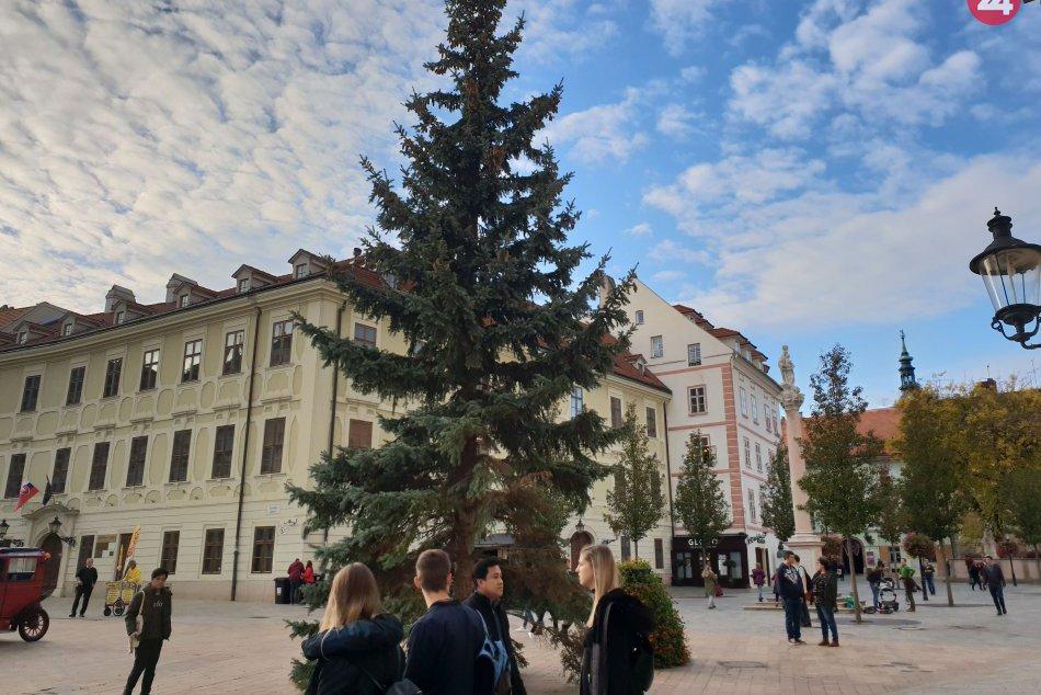 8d9b0362df24 Ilustračný obrázok k článku Na Hlavnom námestí už vyrástol vianočný  stromček. Rozsvietený bude 23.