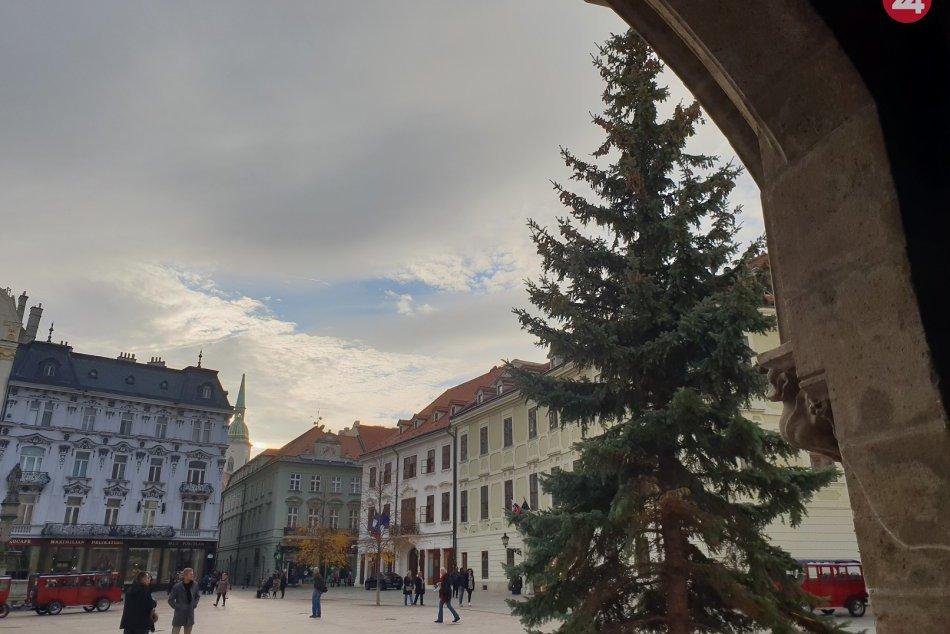 4815b568c4ab Ilustračný obrázok k článku Kým sa stal stromček na Hlavnom námestí  symbolom Vianoc